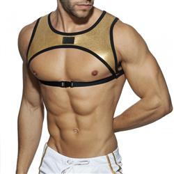 Addicted Party Stripe Harness gold