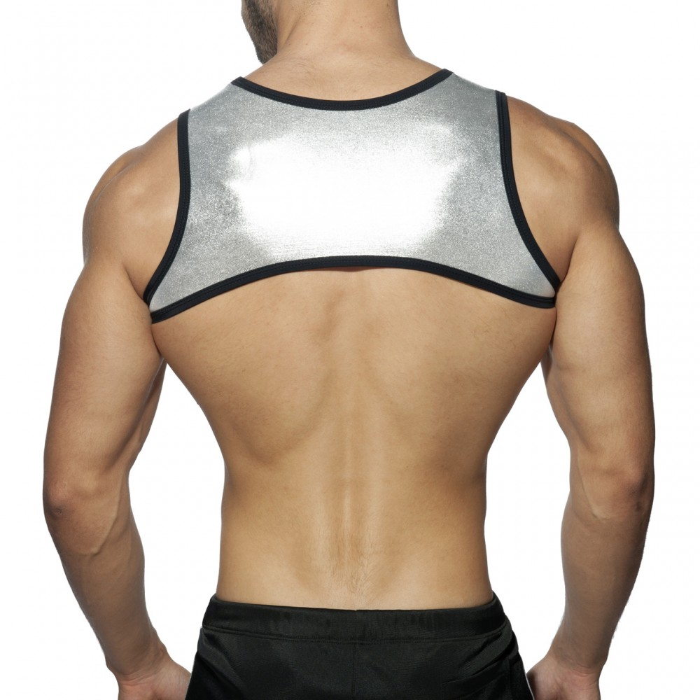 Addicted Party Stripe Harness silver